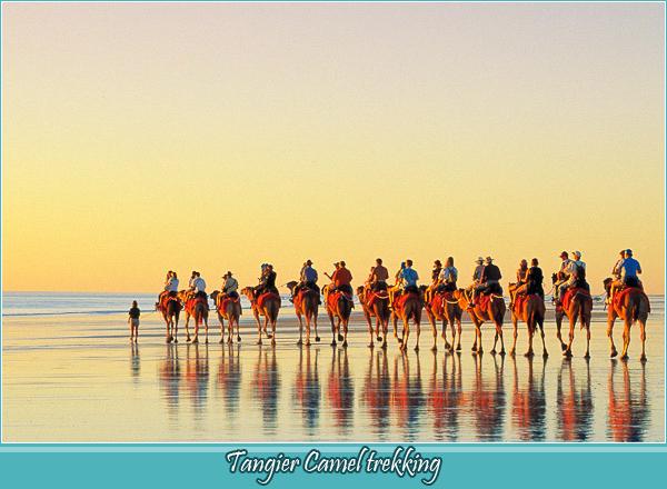 Tangier Camel trekking